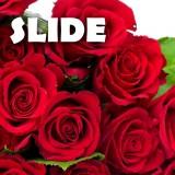 Mr.Slide - Bukiet Pełen Róż (Podziękowania Dla Rodziców) - (audio)